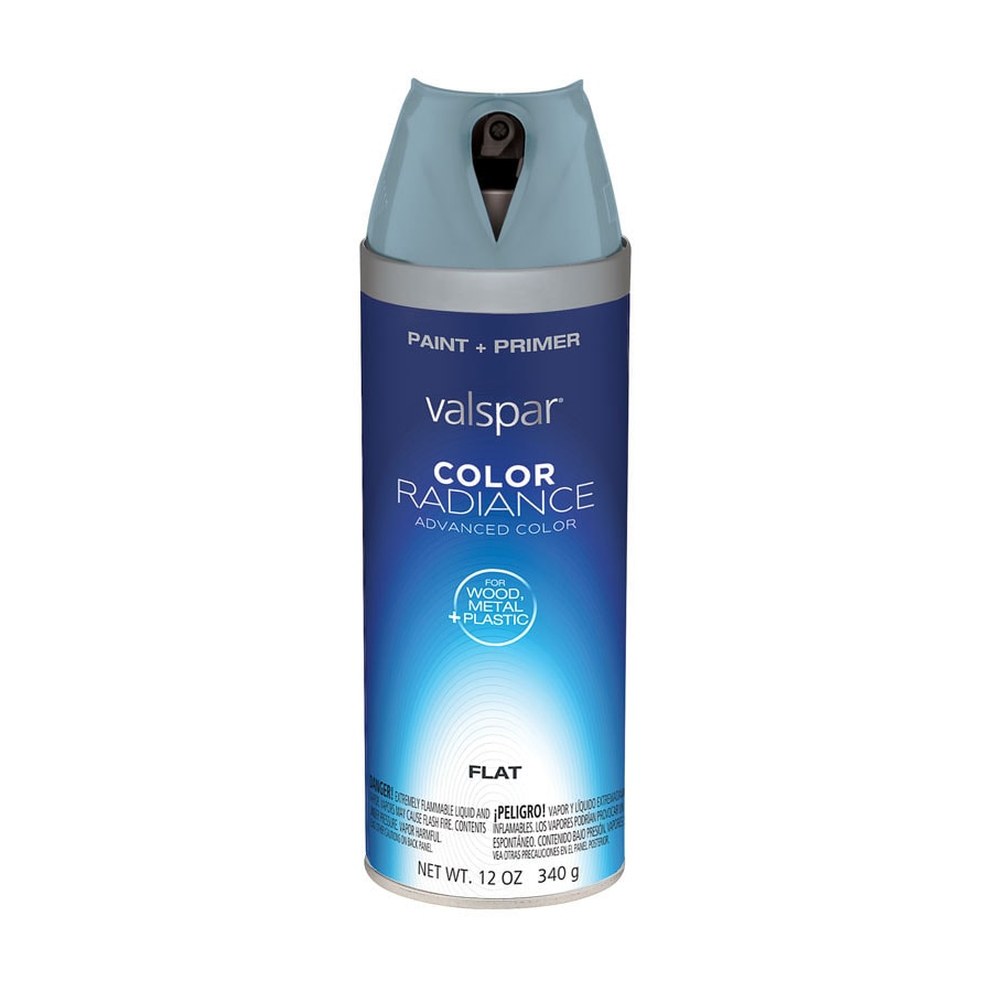 Valspar Silver Fox Indoor/Outdoor Spray Paint