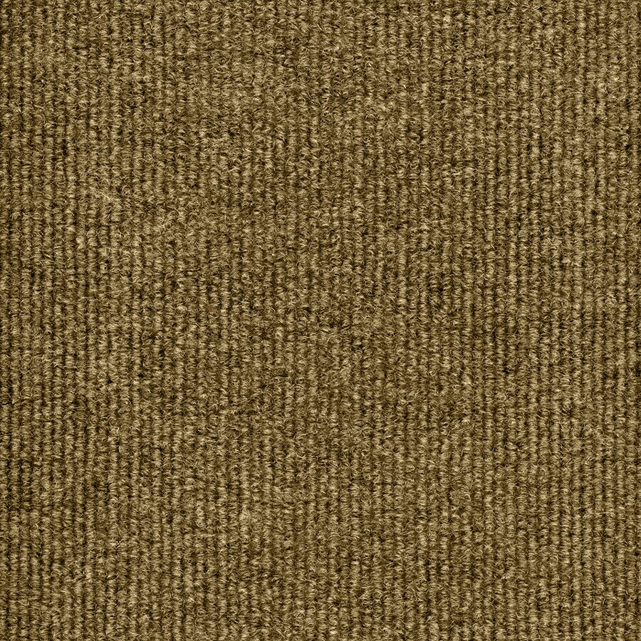 Select Elements Foster Stone Beige Needlebond Outdoor Carpet