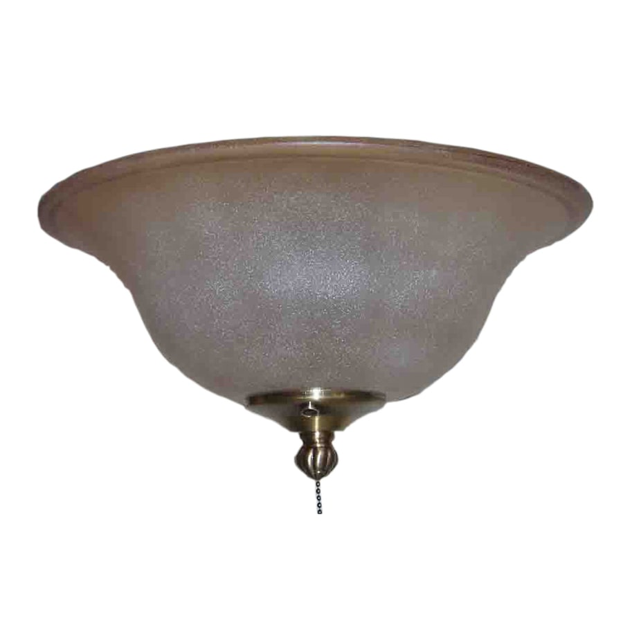 Harbor Breeze 2-Light Brass Ceiling Fan Light Kit with Bowl Shade