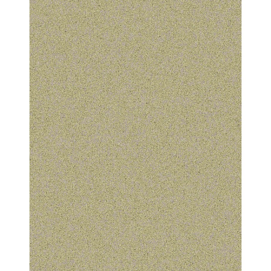 Lexmark Carpet Mills Essentials Focal Point Oats Pattern Indoor Carpet