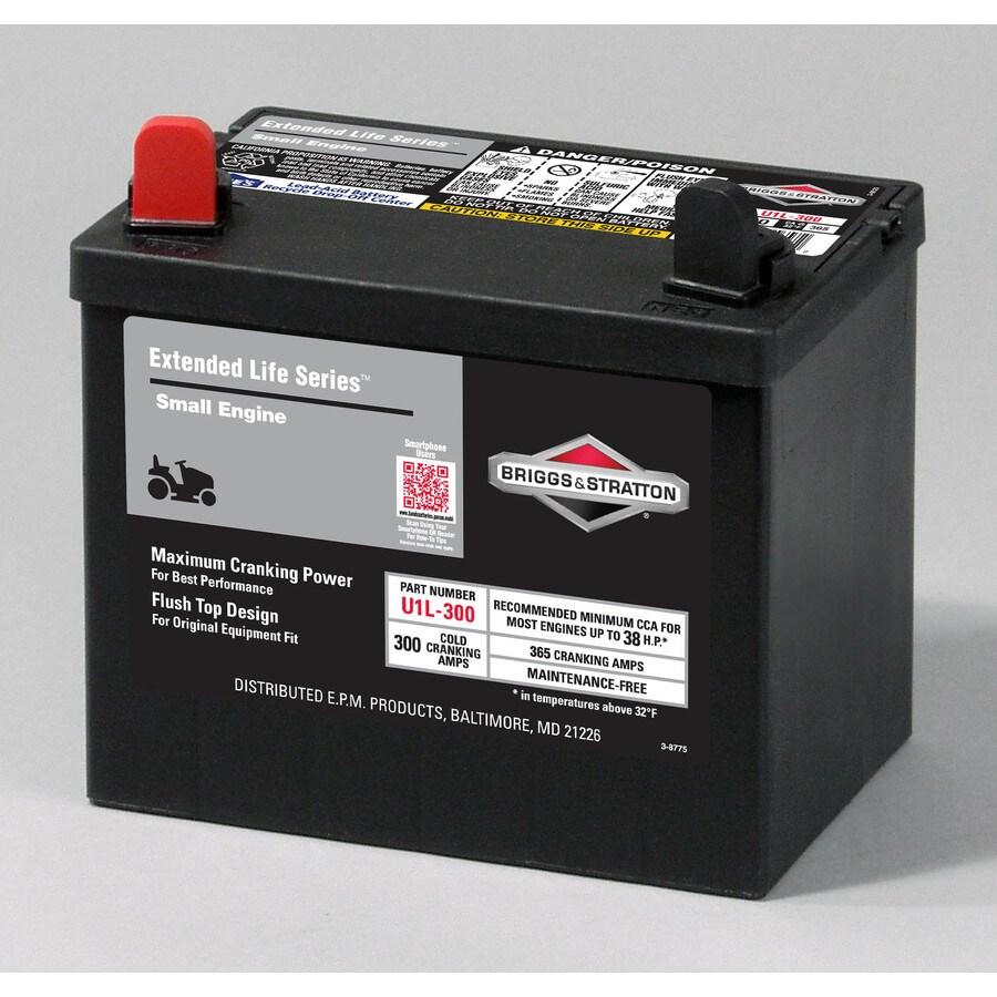 Briggs & Stratton 12-Volt 365-Amp Lawn Mower Battery
