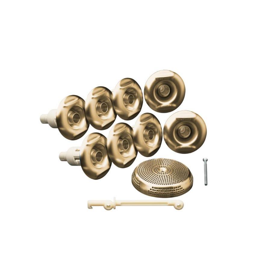 KOHLER Brushed Bronze Flexjet Whirlpool Trim Kit
