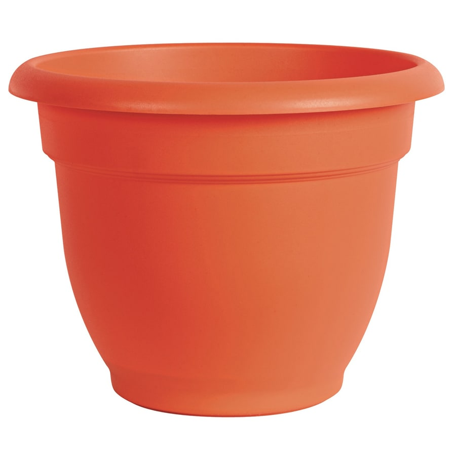 8.75-in x 6.75-in Pot