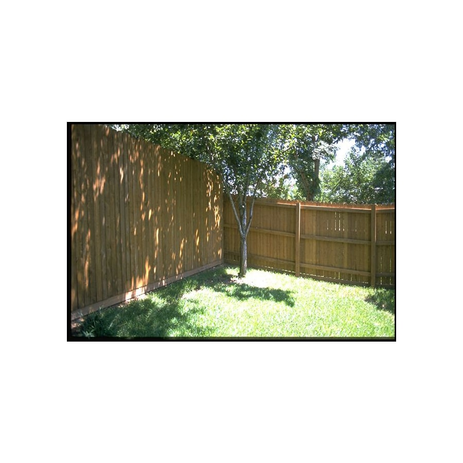 Pressure Treated Wood Pine Fence Picket (Common: 7/16-in x 4-in x; Actual: 0.44-in x 4-in)