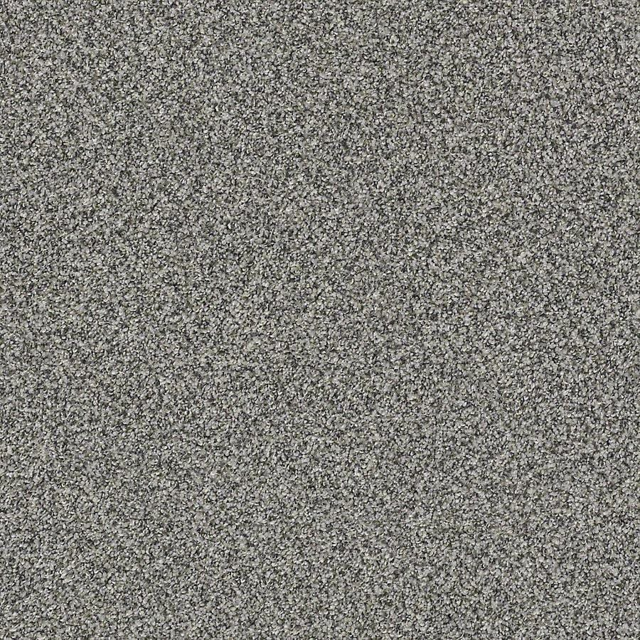 STAINMASTER Petprotect Mineral Bay I 12 Ft Fish Hook Textured Indoor Carpet
