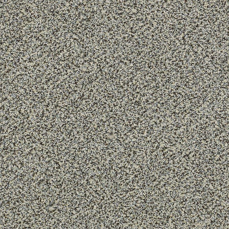 STAINMASTER PetProtect Mineral Bay Tidal Wave Textured Indoor Carpet