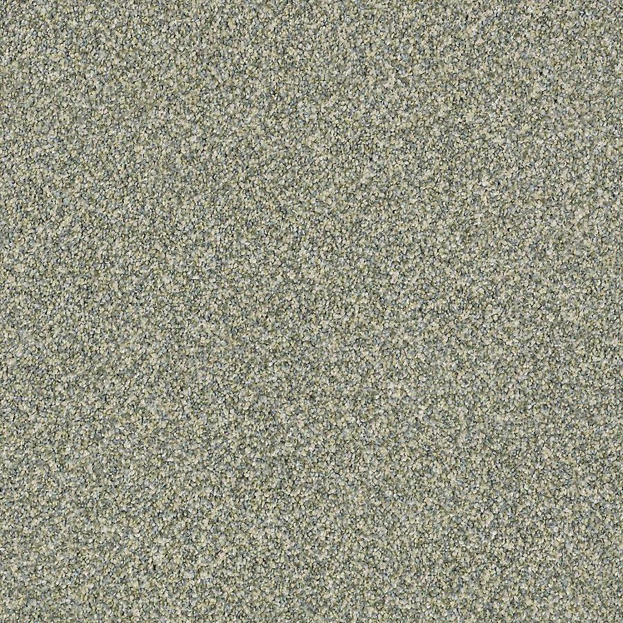 STAINMASTER Petprotect Mineral Bay Ii 12 Ft Lagoon Textured Indoor Carpet