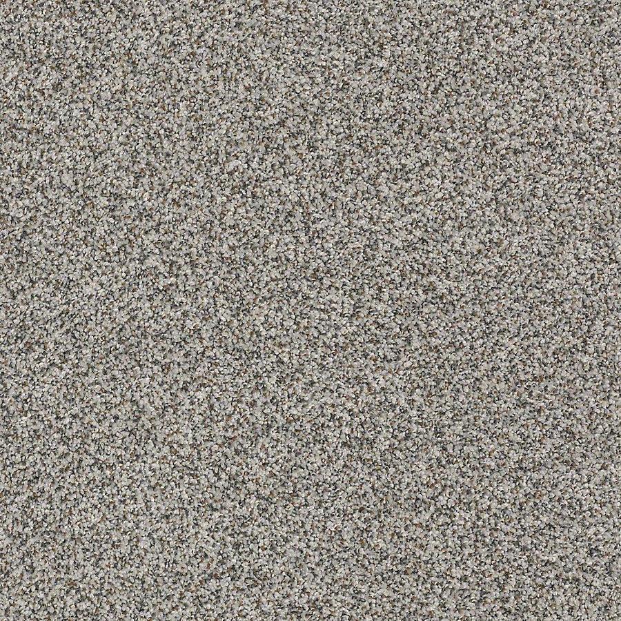STAINMASTER PetProtect Mineral Bay Harbor Mist Textured Indoor Carpet