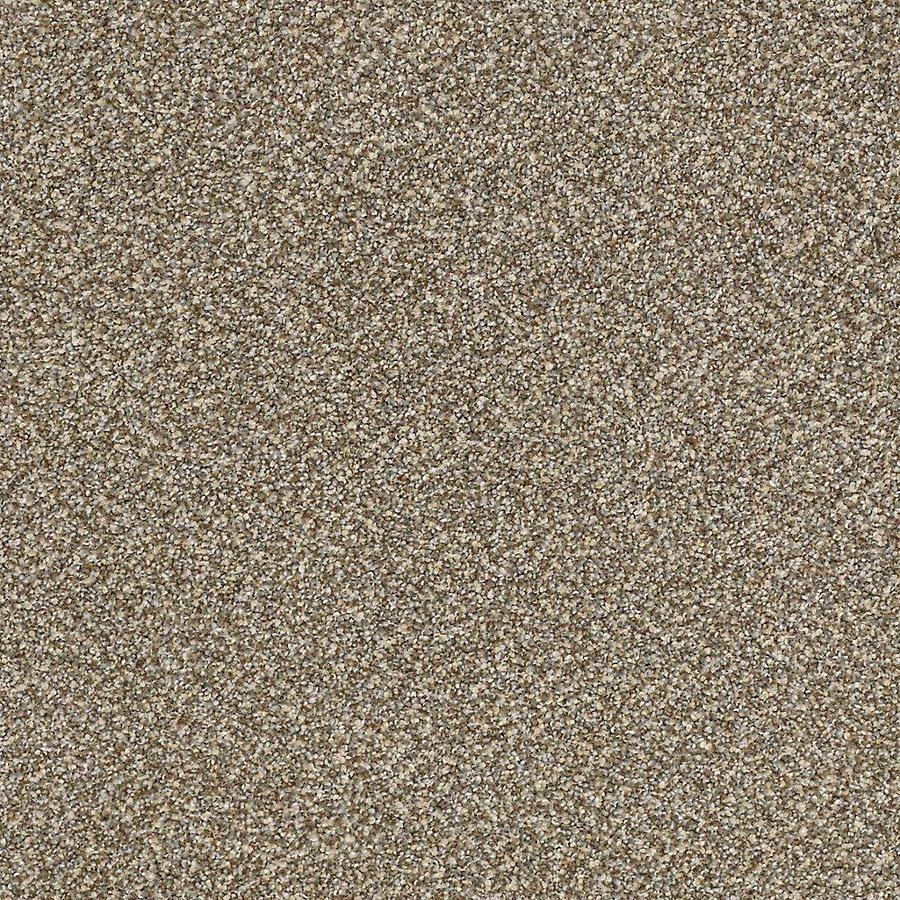 STAINMASTER PetProtect Mineral Bay Surfboard Textured Indoor Carpet