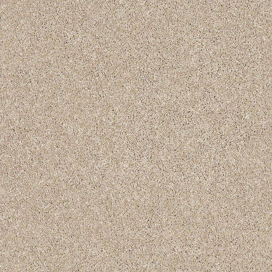 STAINMASTER Petprotect Foundry I 12 Ft Classic Sand Textured Indoor Carpet