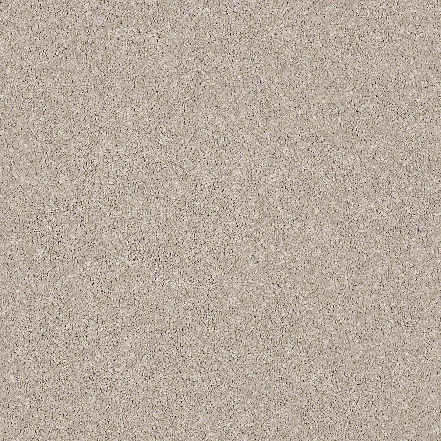 STAINMASTER Petprotect Foundry I 15 Ft Stucco Glaze Textured Indoor Carpet