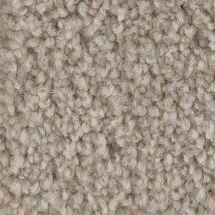 STAINMASTER Active Family Wade Pool Cool Breeze Textured Indoor Carpet