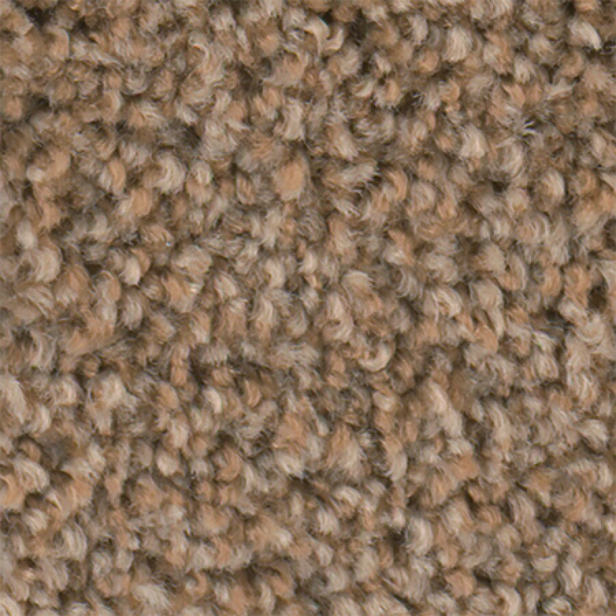 STAINMASTER Active Family Wade Pool Wet Sand Textured Indoor Carpet