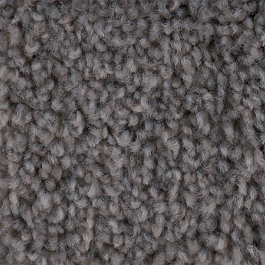 STAINMASTER Active Family Wade Pool Celtic Textured Indoor Carpet