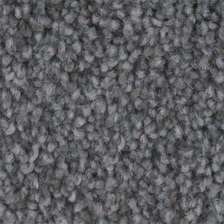 STAINMASTER Active Family Wade Pool Concrete Textured Indoor Carpet