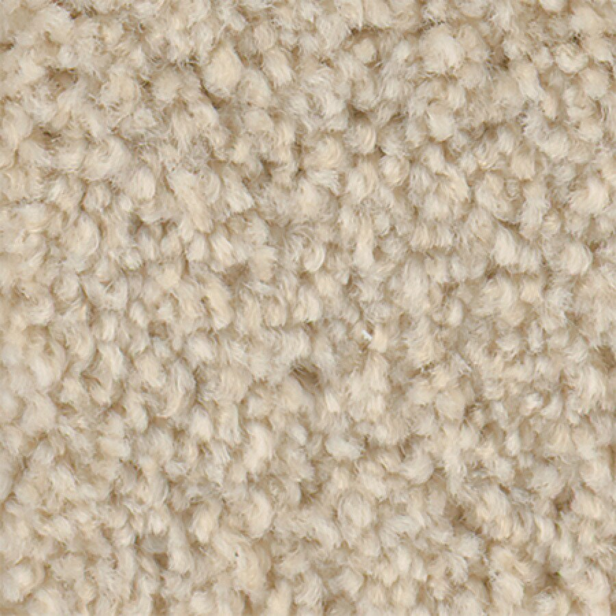 STAINMASTER Active Family Wade Pool Sweet Cream Textured Indoor Carpet
