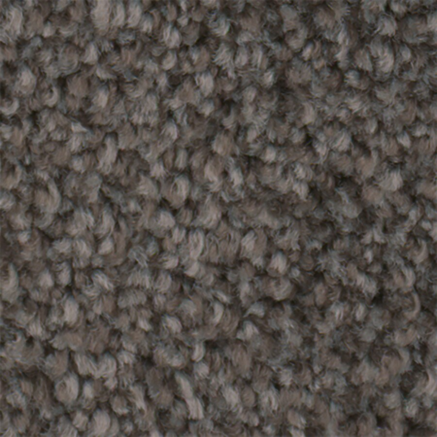 STAINMASTER Active Family Wade Pool Sediment Textured Indoor Carpet
