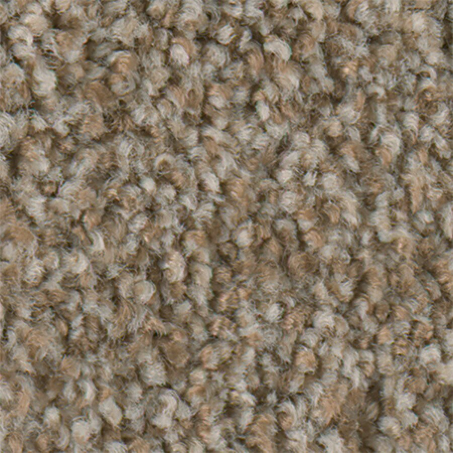 STAINMASTER Active Family Water Taxi Pecan Sandie Textured Indoor Carpet