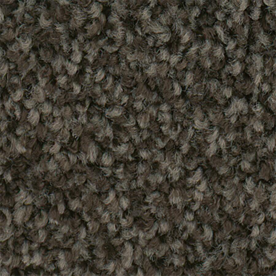 STAINMASTER Active Family Water Taxi Buckaroo Textured Indoor Carpet