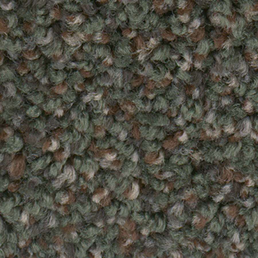 STAINMASTER Essentials Splash City Evergreen Textured Indoor Carpet
