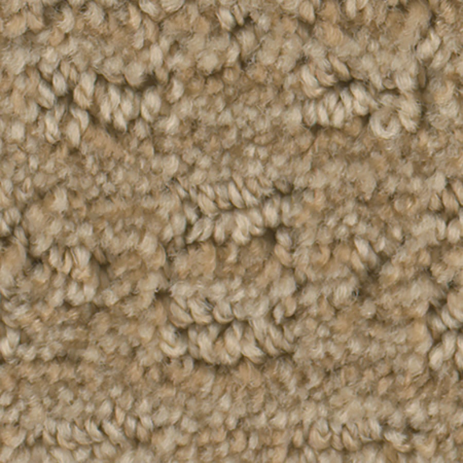 STAINMASTER Active Family Splash Town Ale Pattern Indoor Carpet