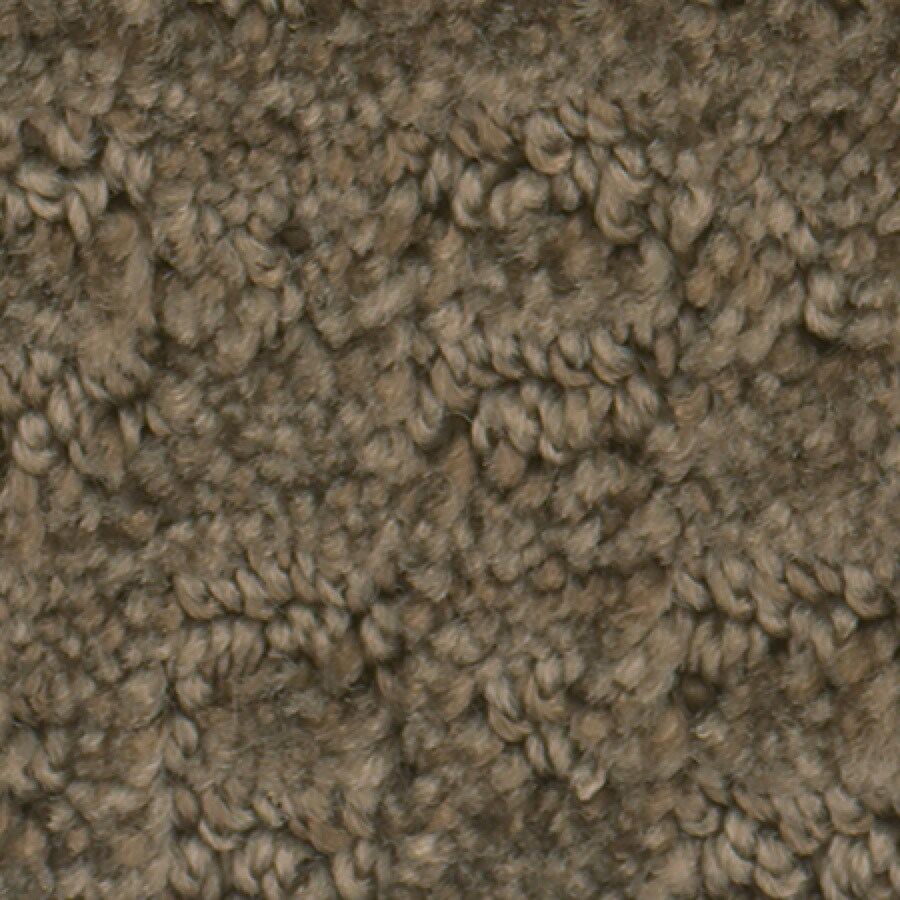 STAINMASTER Active Family Splash Town Hardwood Pattern Indoor Carpet