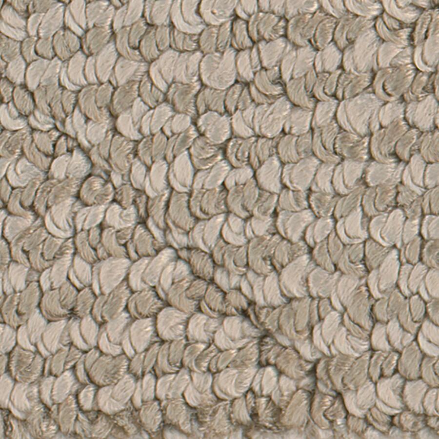STAINMASTER Canoe Apple Crunch Pattern Indoor Carpet