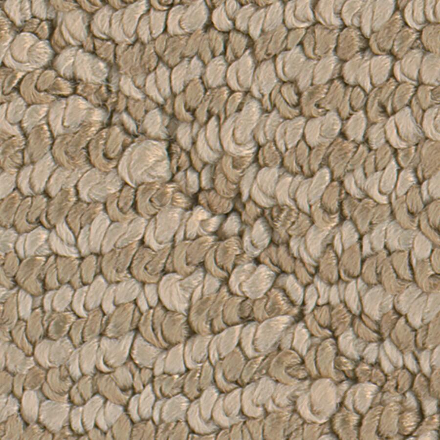 STAINMASTER Canoe Adobe Pattern Indoor Carpet