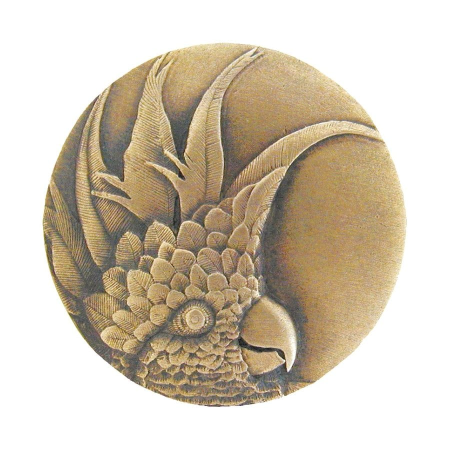 Notting Hill 1-3/8-in Brass Tropical Round Cabinet Knob