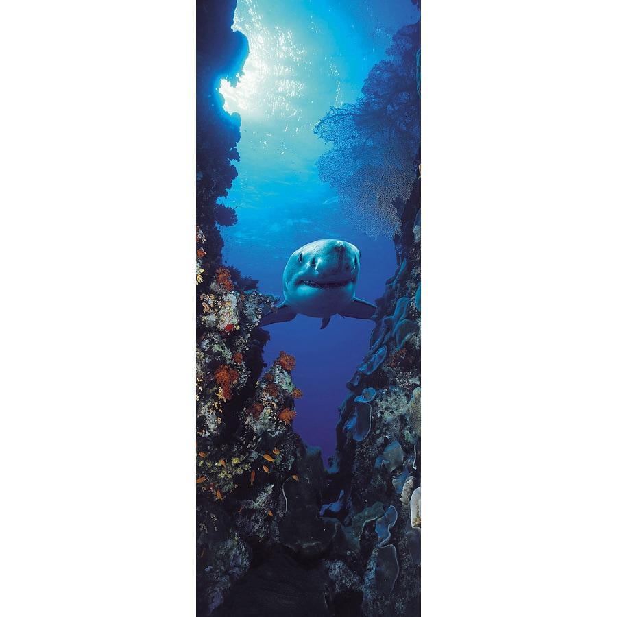 Brewster Wallcovering Komar Fish Murals
