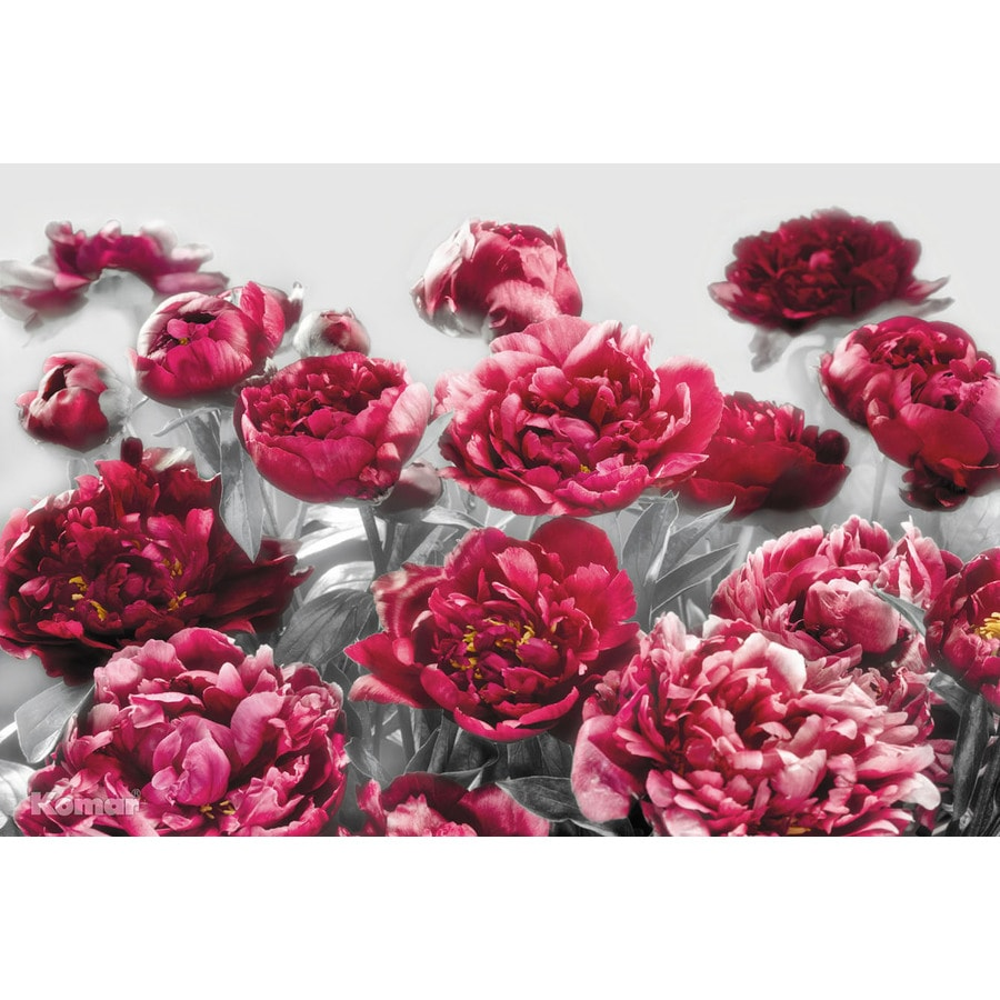 Brewster Wallcovering Ideal Decor Floral Mural