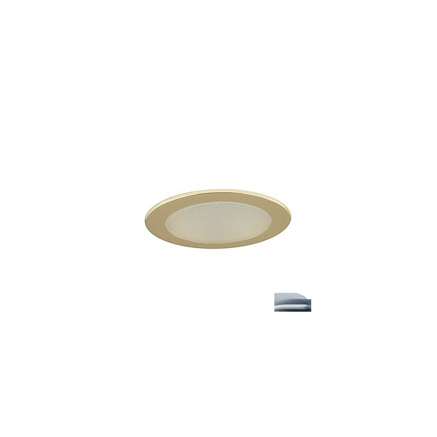 JESCO Satin Chrome Shower Recessed Light Trim (Fits Housing Diameter: 4-in)