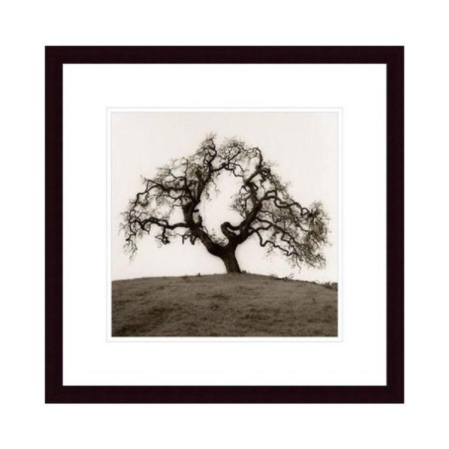 Printfinders 20.3-in W x 20.3-in H Framed Paper Hillside Oak Print Wall Art