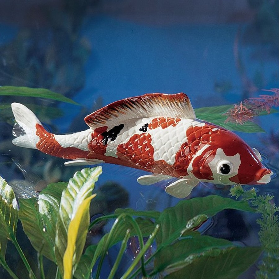 Lowes koi pond house of fishery lovers for Koi fish pond lowes