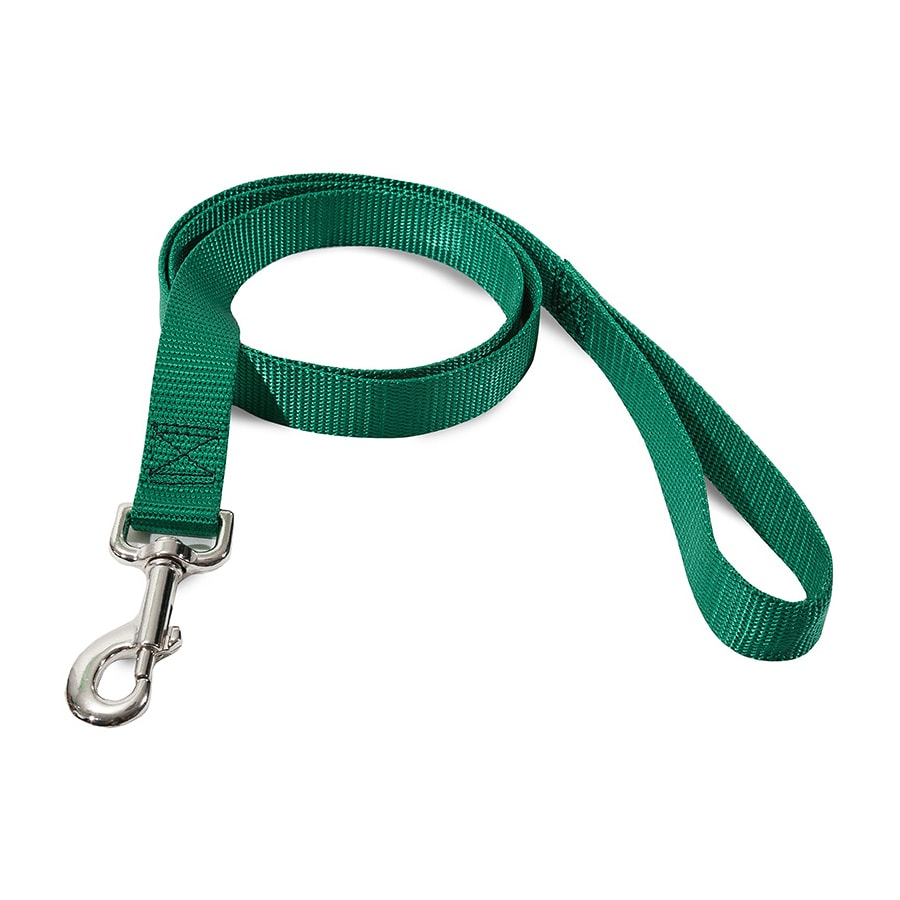Majestic Pets Green Nylon Dog Leash