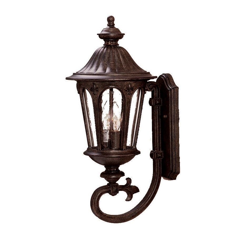 Acclaim Lighting Marietta 20.5-in H Black Coral Outdoor Wall Light