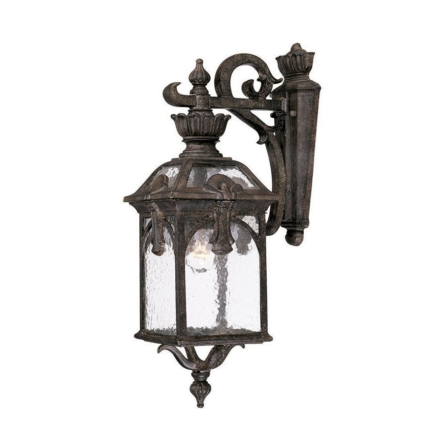 Acclaim Lighting Belmont 20.5-in H Black Coral Outdoor Wall Light