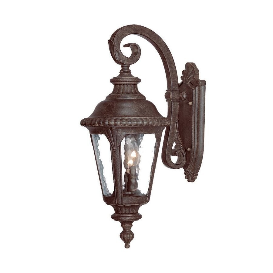 Acclaim Lighting Surrey 24.5-in H Black Coral Outdoor Wall Light
