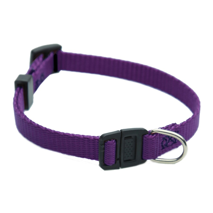 Majestic Pets Purple Nylon Breakaway Collar