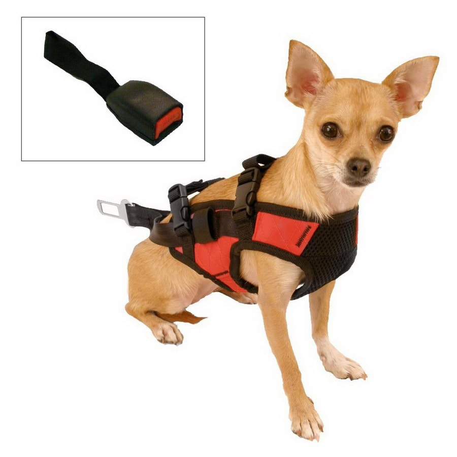 Snoozer Red and Black Dog Harness
