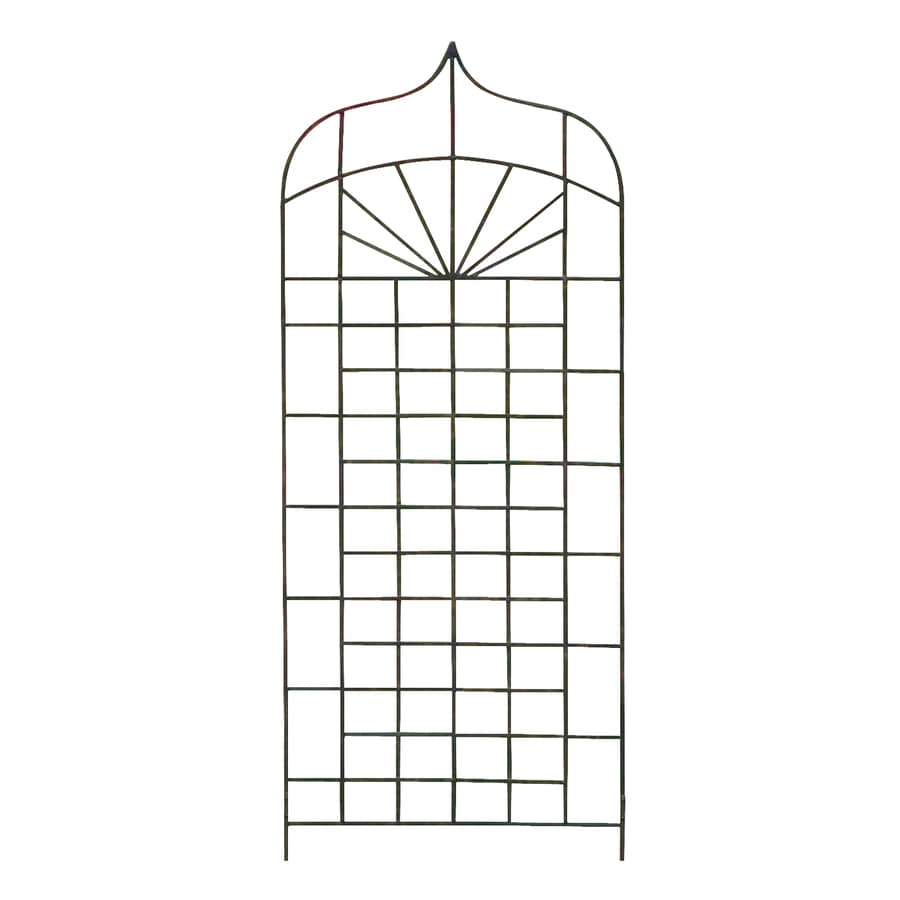 H. Potter Ogee 32-in W x 72-in H Charcoal Brown Garden Trellis