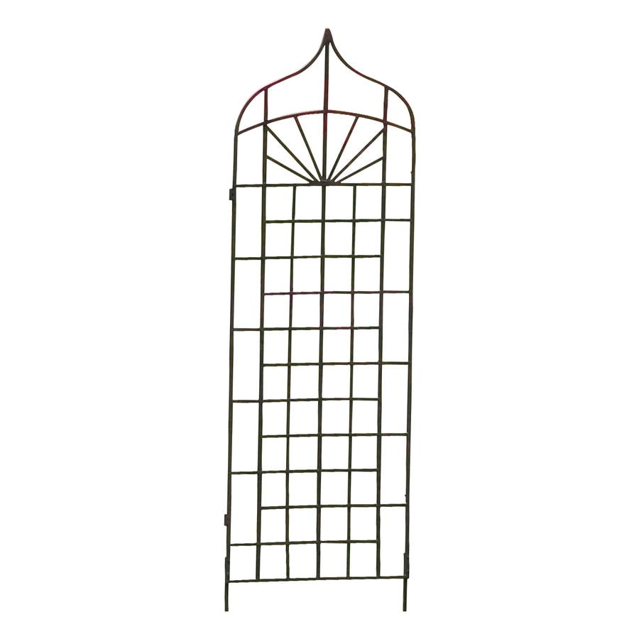 H. Potter Ogee 24-in W x 62-in H Charcoal Brown Garden Trellis