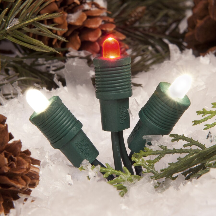 TreeKeeper 50-Count Constant Red/White LED Plug-In Mini Christmas String Lights