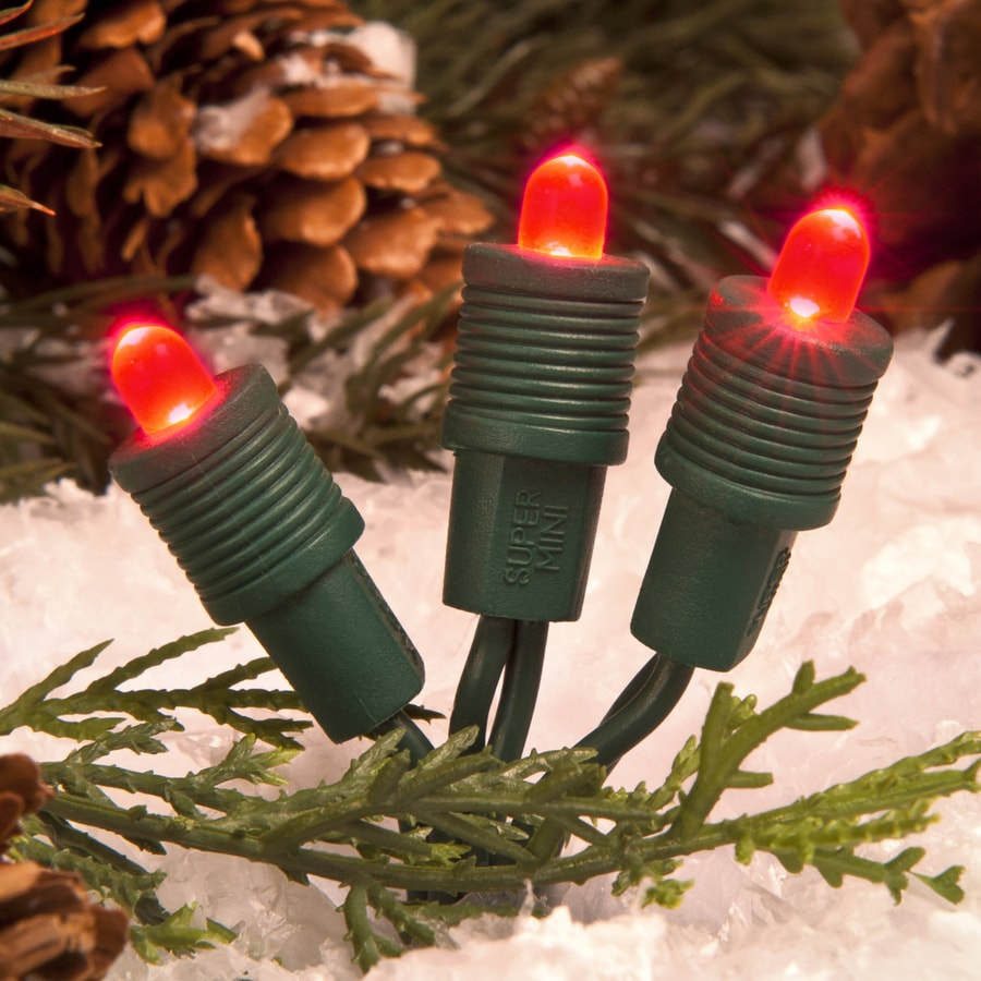 TreeKeeper 50-Count Constant Red LED Plug-In Mini Christmas String Lights