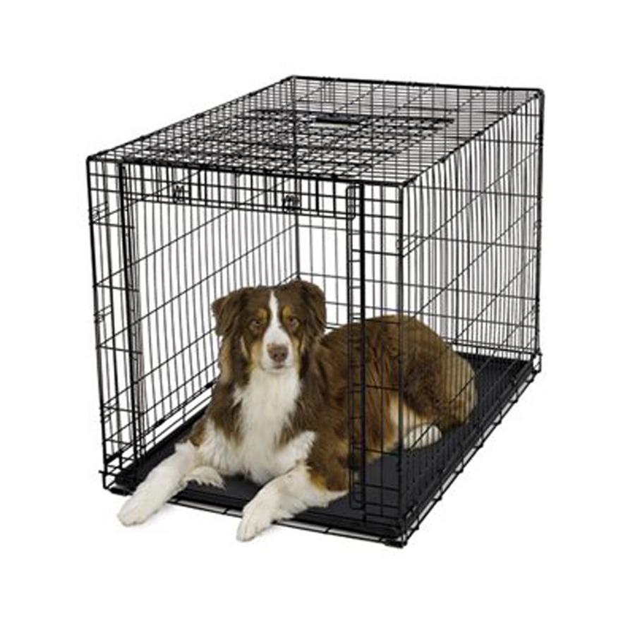 midwest pets 3.58-ft x 2.41-ft x 2.58-ft Collapsible Plastic and Wire Pet Crate