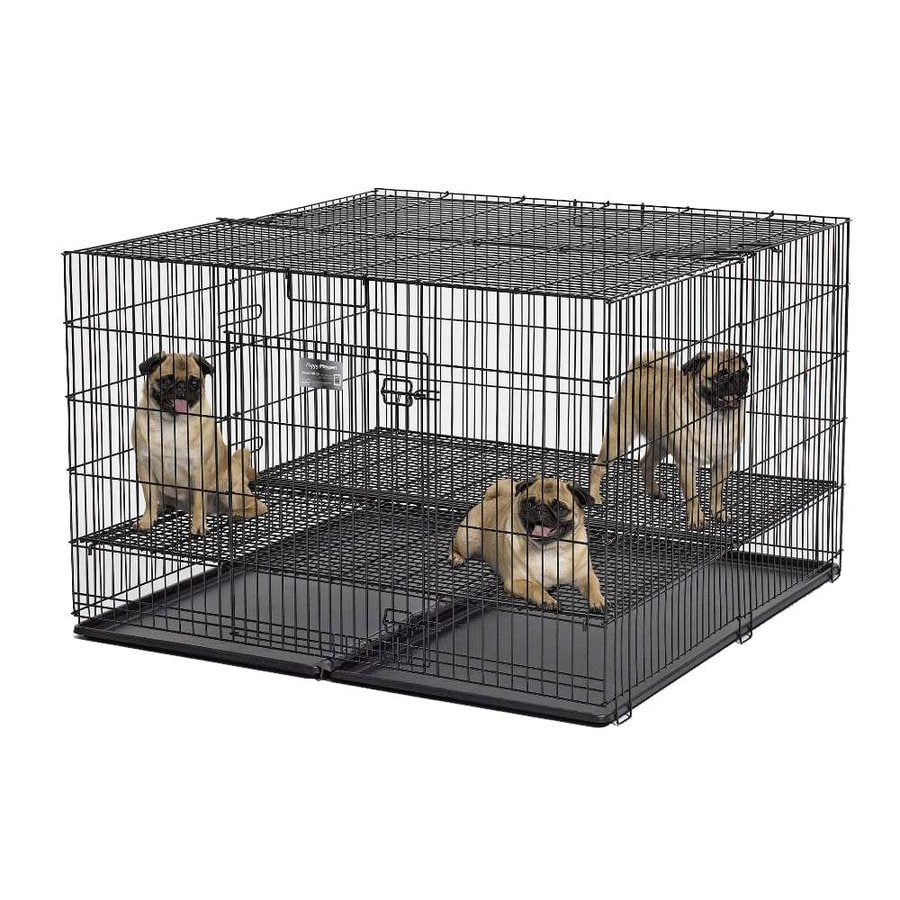 midwest pets 4-ft x 4-ft x 2.5-ft Double-Nickel Chrome Collapsible Plastic and Wire Pet Crate