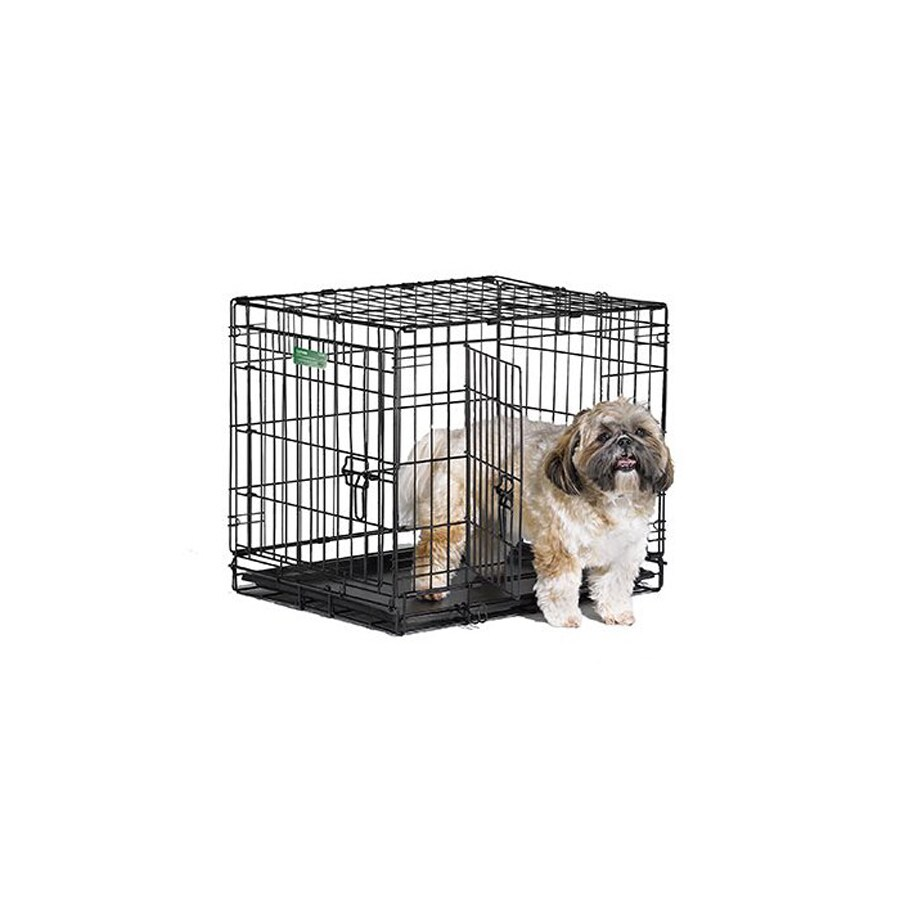 midwest pets 24-in x 18-in x 19-in Black Collapsible Plastic and Wire Pet Crate