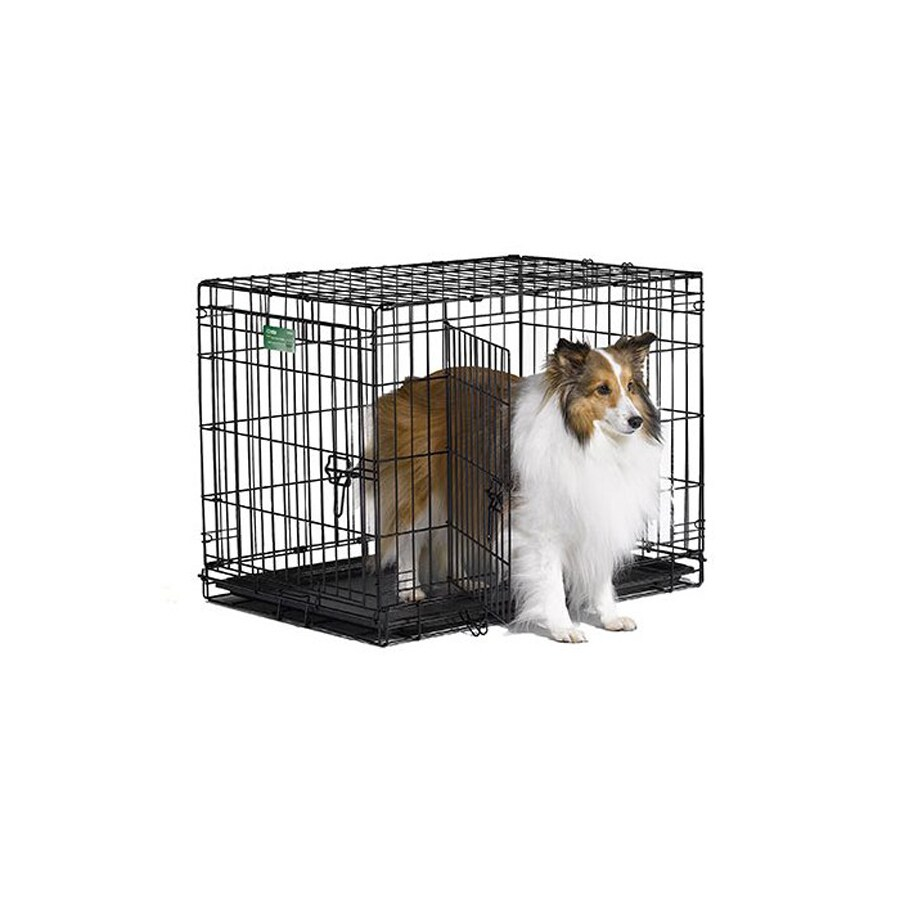 midwest pets 30-in x 19-in x 21-in Black Collapsible Plastic and Wire Pet Crate