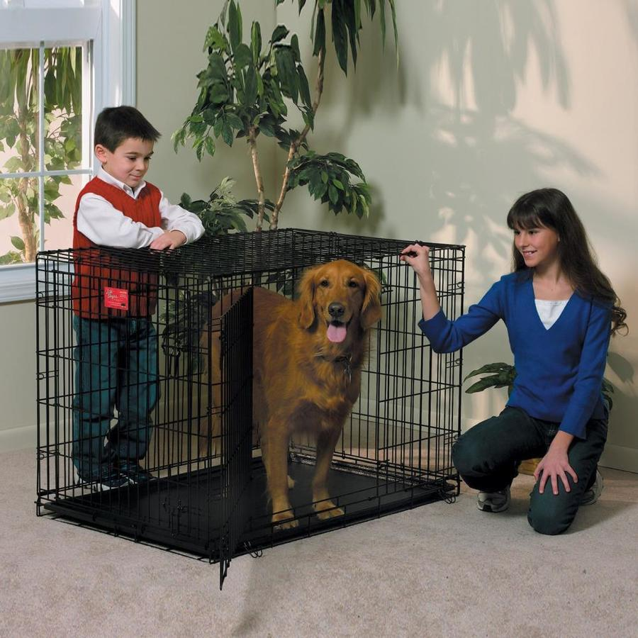 midwest pets 3.5-ft x 2.33-ft x 2.58-ft Black Collapsible Plastic and Wire Pet Crate