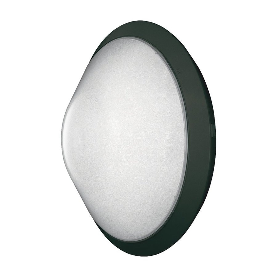 Eurofase Excel 12-in H Black Outdoor Wall Light